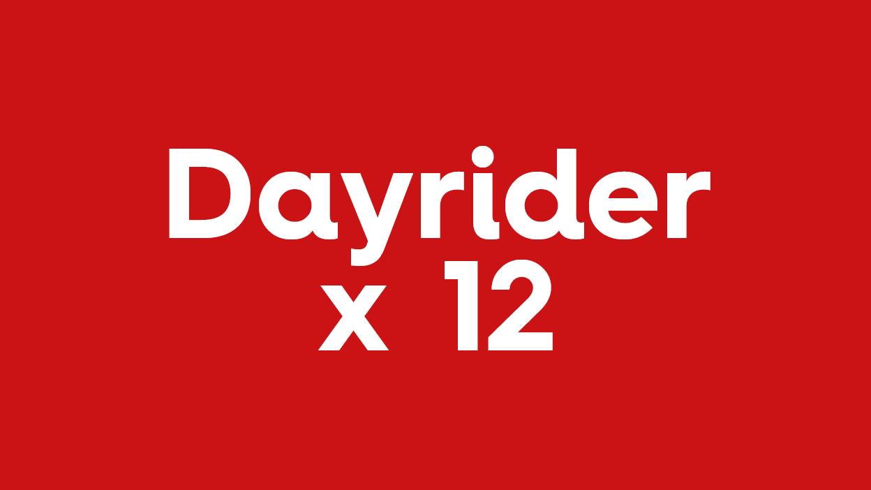 Dayriders x12